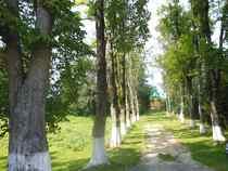 Trasa rowerowa-22