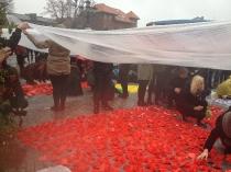 Układanie herbu Polski z kwiatów-2